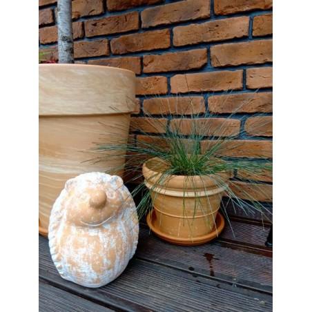 Stara Cegła -Kolor Naturalny 1m2 - zdjęcie 12
