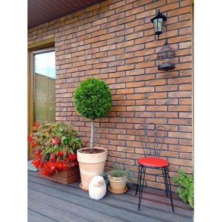 Stara Cegła -Kolor Naturalny 1m2 - zdjęcie 15